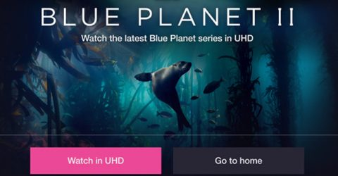 Blue Planet 2 gets 4K UHD iPlayer upgrade