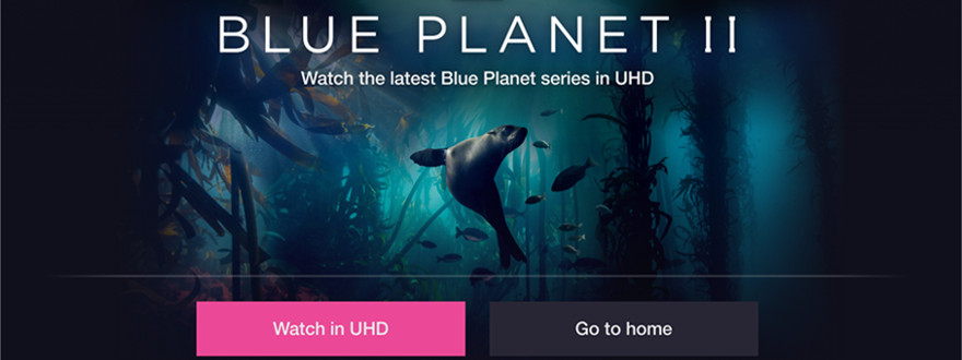 Blue Planet 2 gets 4K UHD iPlayer upgrade