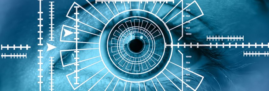 Government's biometrics strategy comes in a little lite