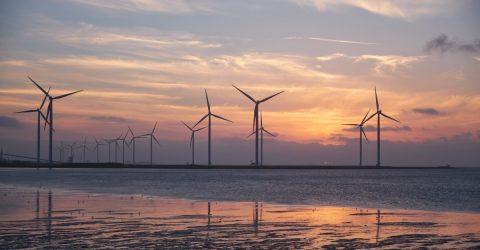 Wind farm at sea with sunset