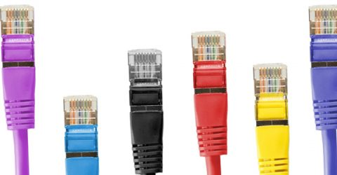 a colorful row of ethernet cables.