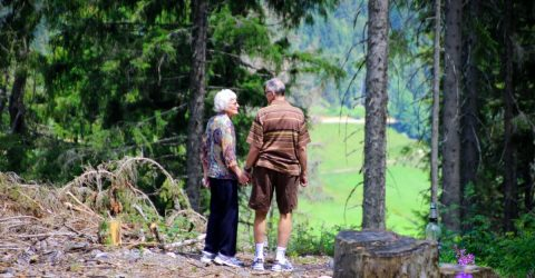 an elderly couple in nature